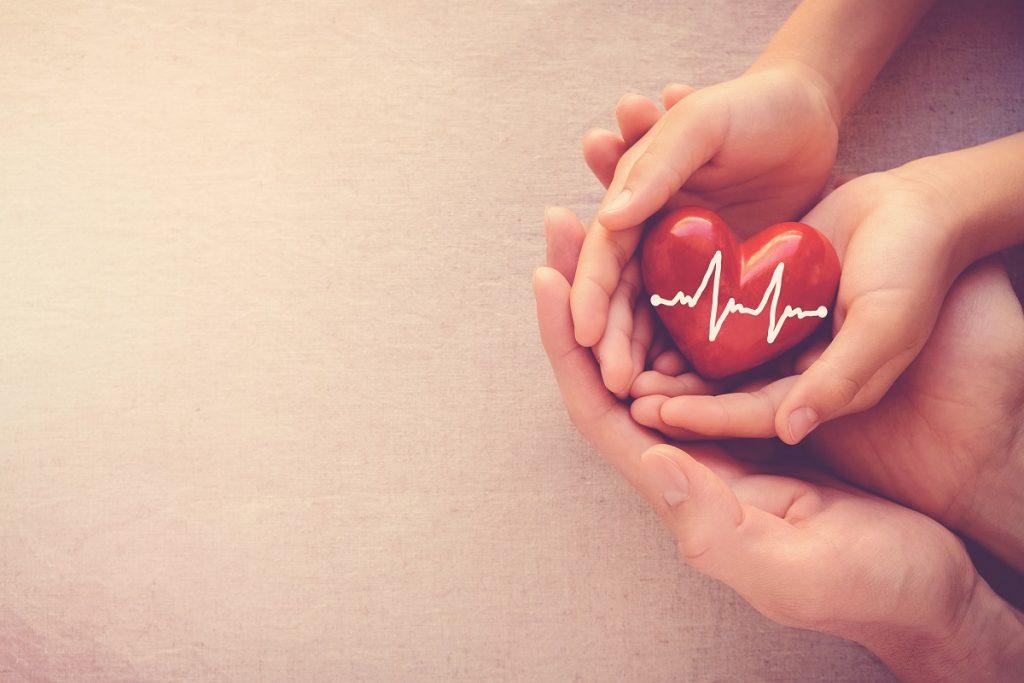hands holding a heart figure